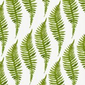 Rfern-pattern03_shop_thumb