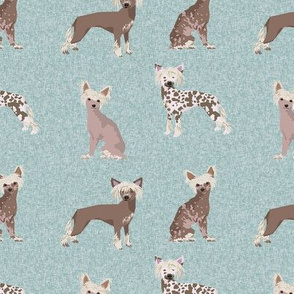 chinese crested pet quilt b dog breed nursery quilt collection coordinate