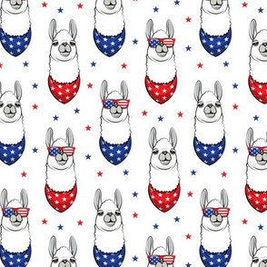 patriotic llamas  with stars