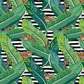 "4"" Cheetah & Tropical Leaves - Black and White Stripes"
