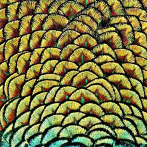 Peacock Pineapple Feathers