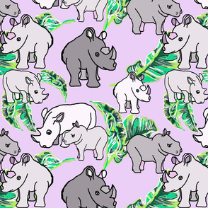 White Rhinos purple