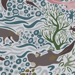 Adorable Axolotls