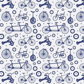 blue bikes 3