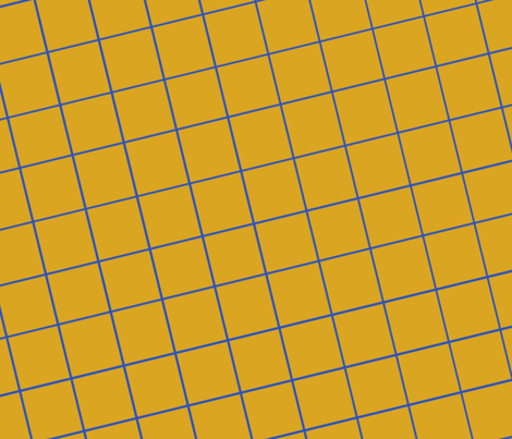 Golden Grid fabric by dry_toast_studio_ on Spoonflower - custom fabric