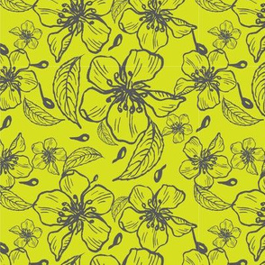 Anenome flowers neon yellow and grey