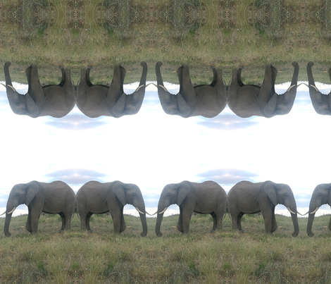 African Elephant fabric by bonsjeans on Spoonflower - custom fabric