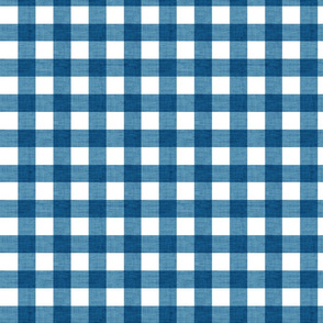 Checker - Blue Texture
