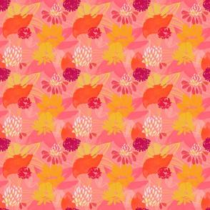 Blood Orange Mimosa pattern 3in sq