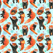 Trickster Red Pandas
