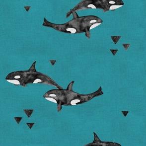 Orcas on Aqua (small)