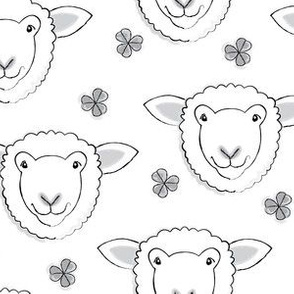 white sheep and clover