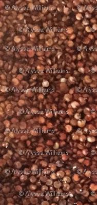 Red Quinoa by Alyssa Williams_45c0