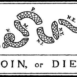 "Join or Die Flag (54""W)"