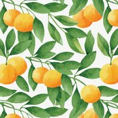 Rrtangerines-pattern_shop_thumb