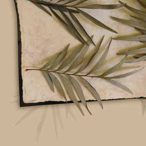 Orientation of dry leafs on a textured paper