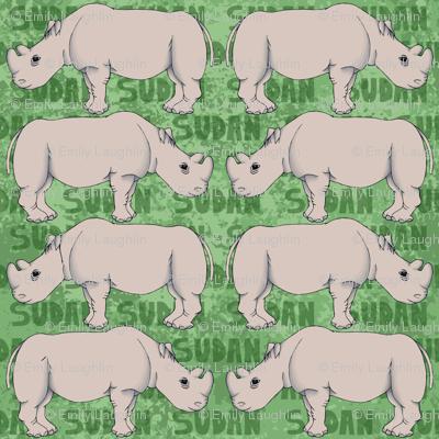 Endangered Northern White Rhino
