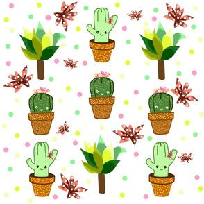 Mr. _ Mrs Cactus