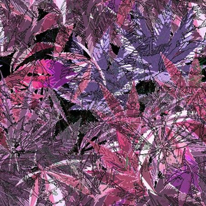 Camomoto Violet Mix