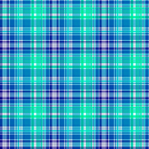 Colorful Expressions Blue Plaid