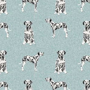 dalmatian pet quilt b collection coordinate dog breed fabric