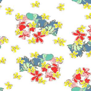 Geraniums white