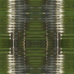 Reflection - pine