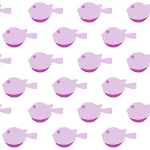 Blowfish-2 pink on white