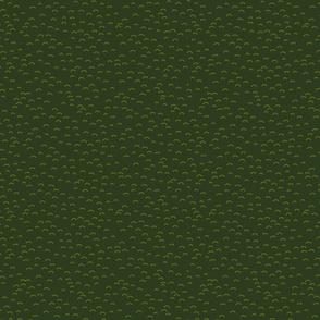 avocado dark green