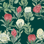 protea - dark green