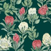 protea - dark green