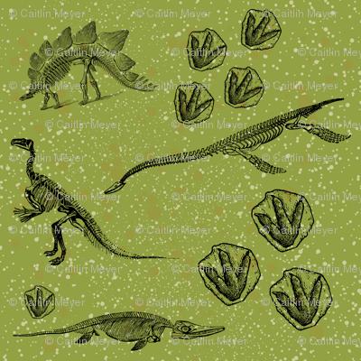 DinoHunt