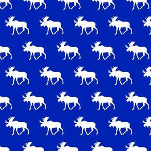 """1"""" moose on custom blue C18BS"""