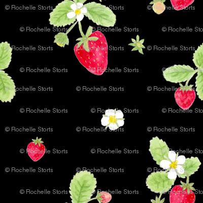 strawberries on black / childrens room baby nursery kids