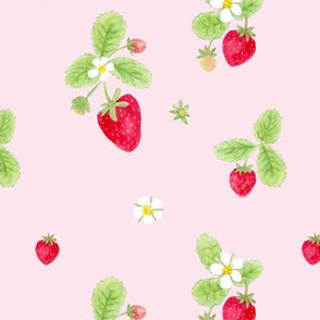 strawberries on blush / childrens room baby nursery kids