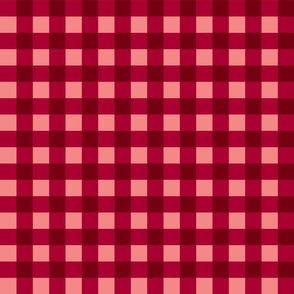Gingham Picnic Check {Red}