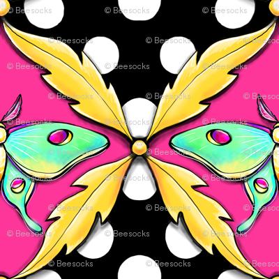 luna moth polka dot damask