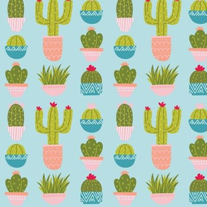 Potted Plants & Cactus - Blue