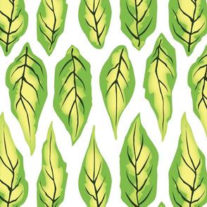 Pristine Spring Leaves
