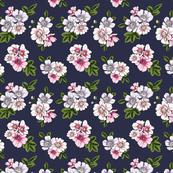 Summerflowers5