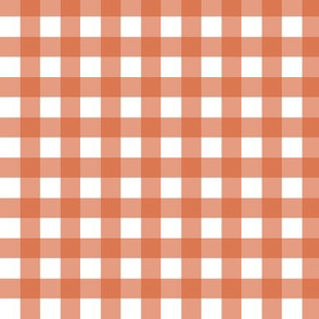 Gingham - Coral Plain & Simple