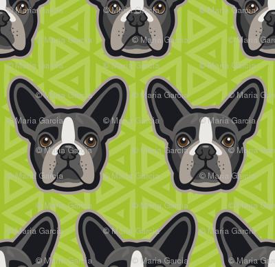 Boston Terrier Chartreuse Green Medium