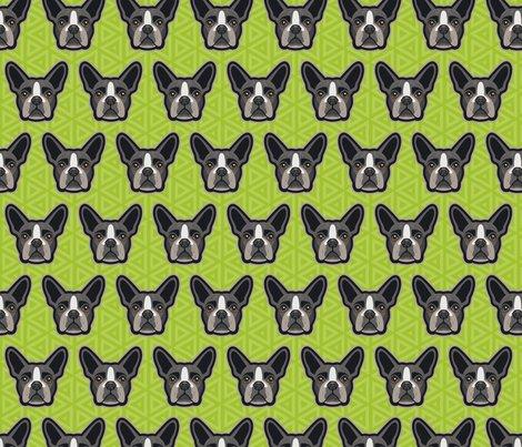 Boston_terrier_green-44_shop_preview