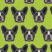 Boston_terrier_green-44_shop_thumb