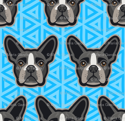 Boston Terrier Blue Medium