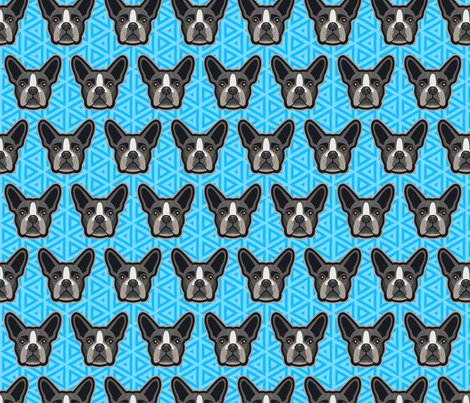 Boston_terrier_bblue-60_shop_preview
