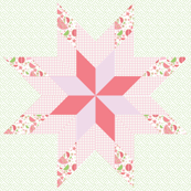 Lone Star Cheater Quilt Bright Pink