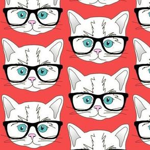 Hipster Kitten Red