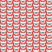 Hipster Kitten Red Small