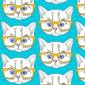 Hipster Kitten Turquoise Blue